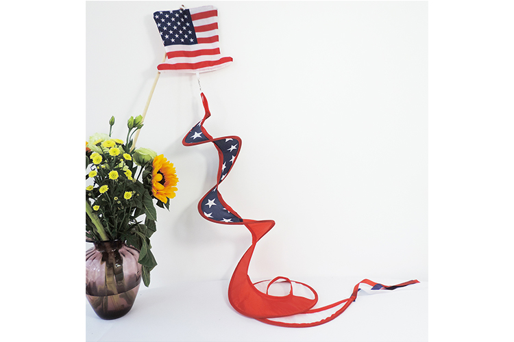 American Wind Sock