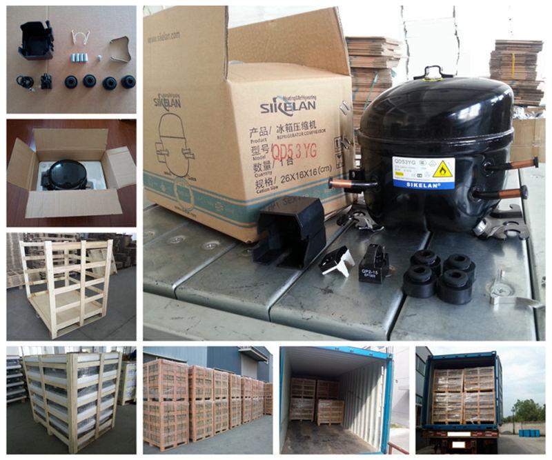 High Efficiency DC Compressor 12V 24V Compressor Qdzh65g R134A Lbp for Car Refrigerator Freezer