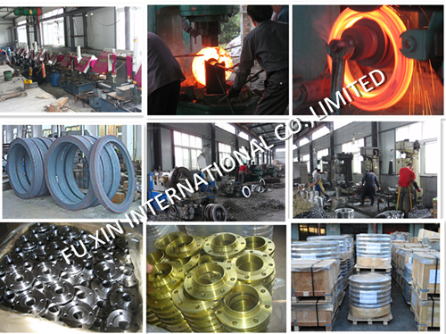 Stainless Steel S. S. 304/304L Flange