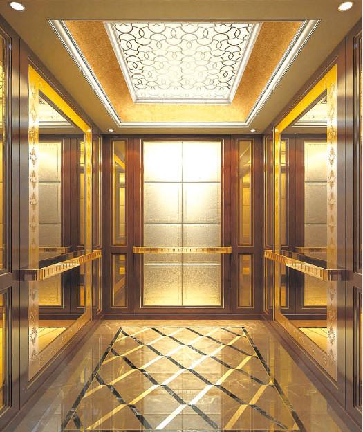 Mrl Glass Villa/Home Lift for 3-5 Persons