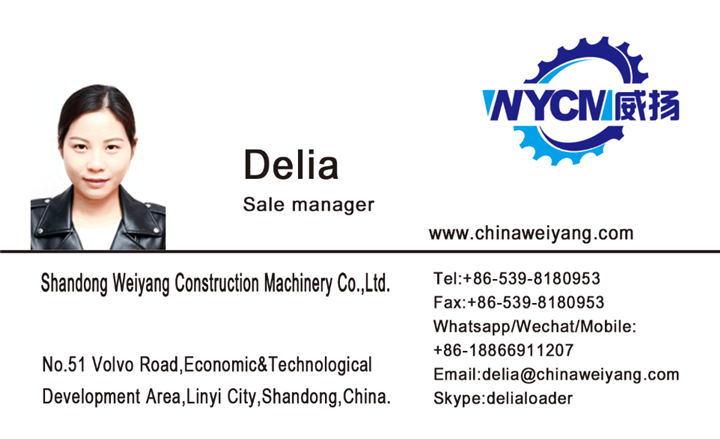 Weichai Engine Parts Turbocharger 12270137 7200002522