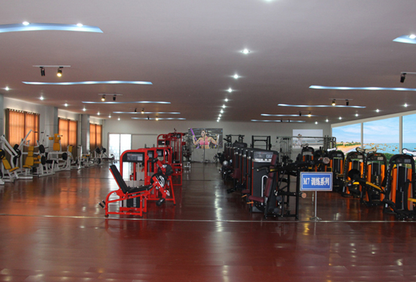 Fitness Equipment for Glute Machine (M2-1022)