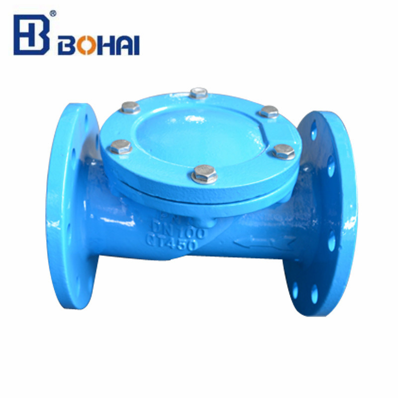 Rubber Disc Flanged Check Valve