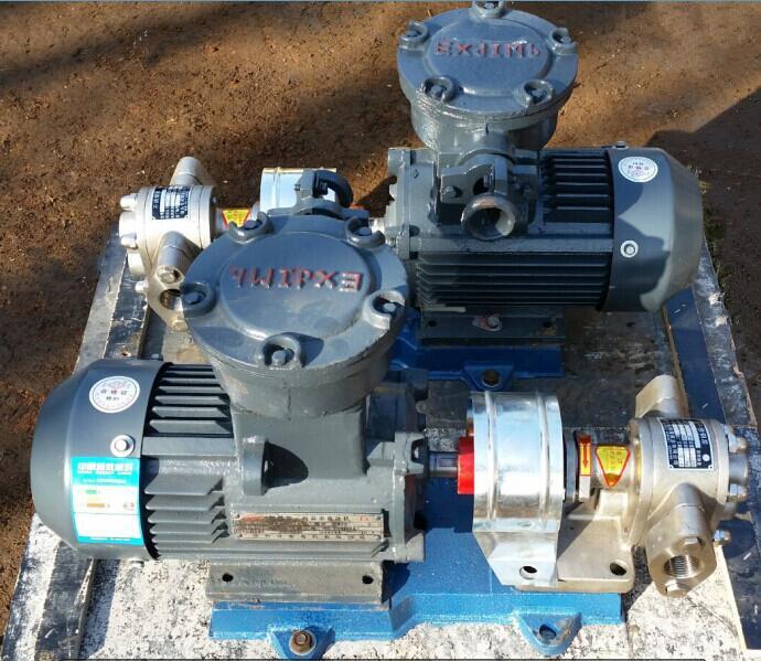 Self-priming hydraulic gear pump for biodiesel oil industry