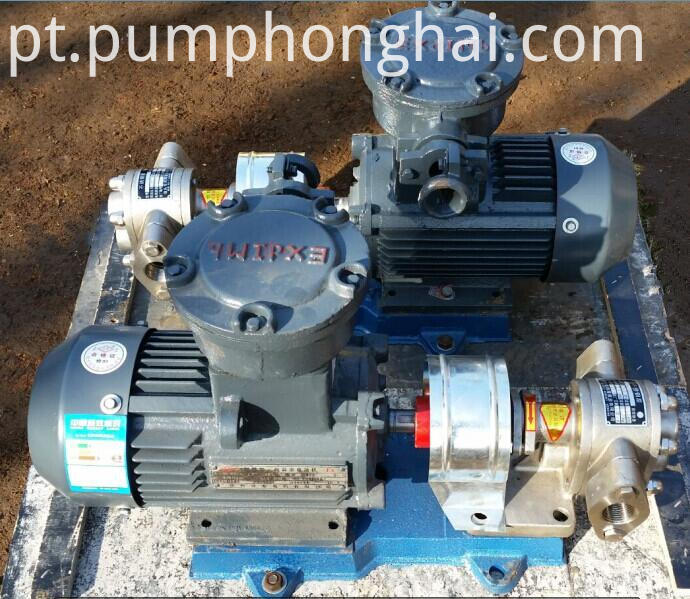 olive oil gear pump