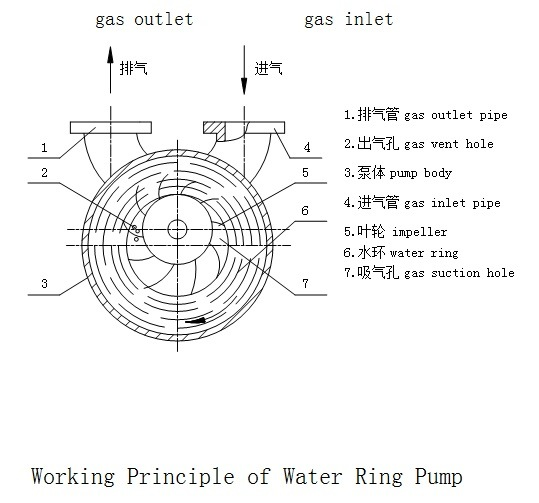 7.5kw Two Stage Water Ring Vacuum Pump