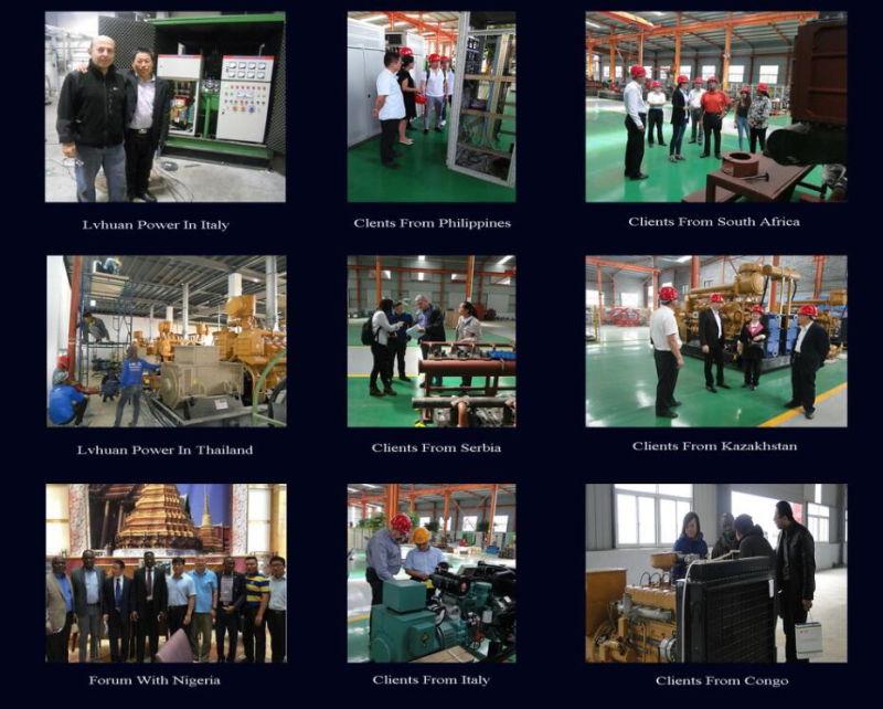 CE ISO Standard Green Power 500kw Biogas Generator/Genset