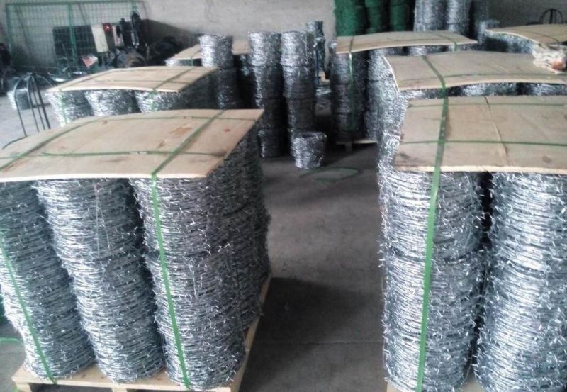 Hot-Dipped Galvanized Razor Barbed Wire for Fence