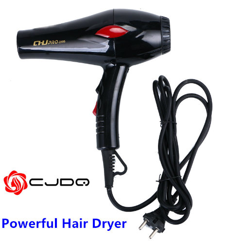 DC Motor Professional Household Hair Dryer Ionic 2000W