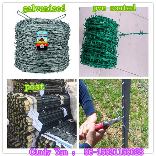 Grassland Barbed Wire 200-500m/Roll Wire Diameter 2.5mm