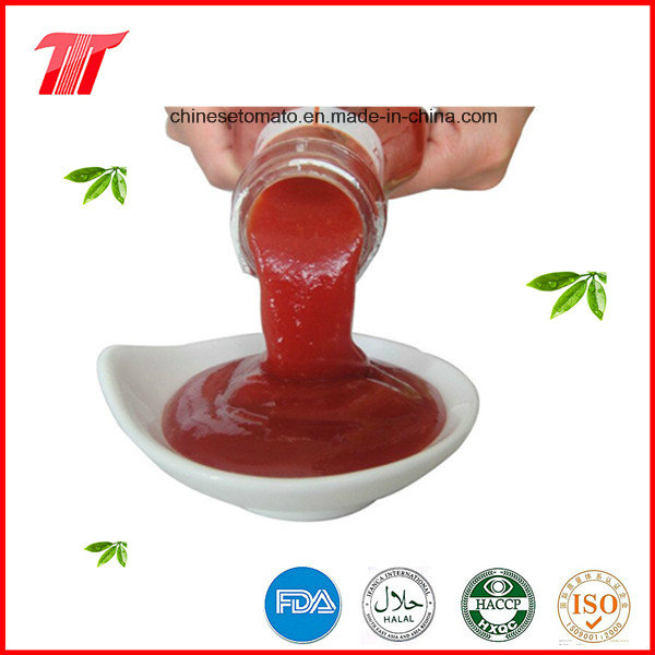 340g Tomato Ketchup with Plastic Bottle Paching