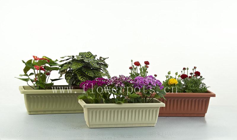Window Box Flower Pot (KD443-KD449)