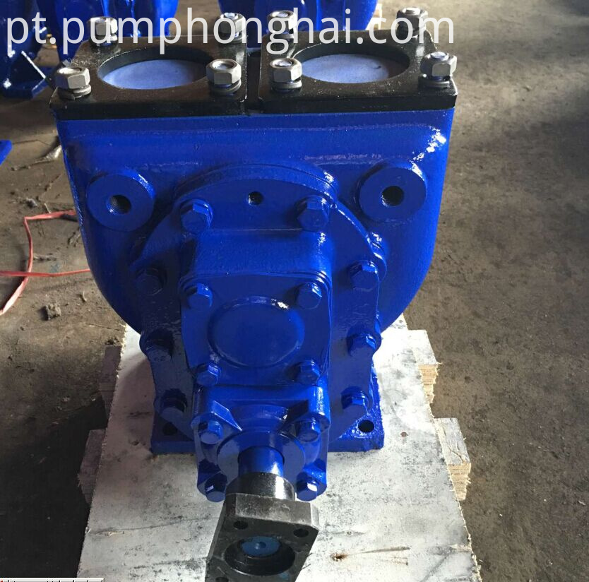 New type fuel oil gear pump(pump's body have the fixed holes