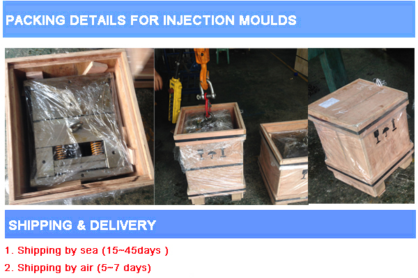 Peek Tube Pipe Fitting Plastic Injection Mould