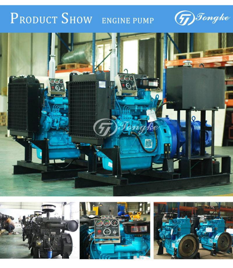 Diesel Engine Rotor Water Pump (set)