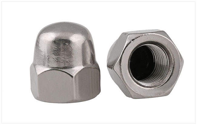 Stainless Steel Slotted Hex Cap Nut