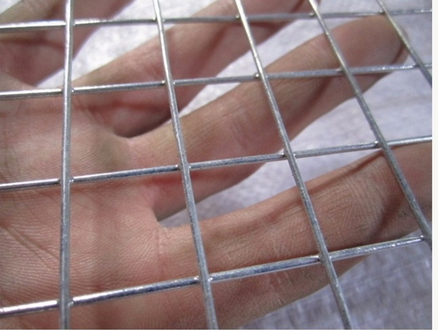 High Quality Galvanized Welded Wire Mesh Panel Roll
