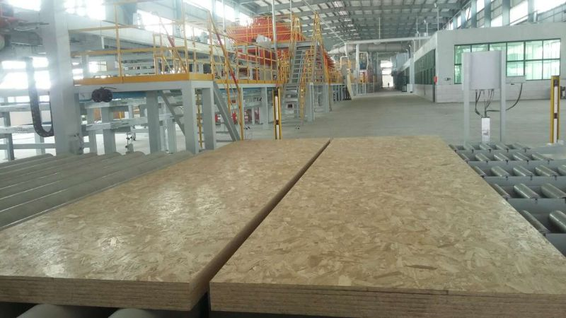 OSB for Packaging Usage