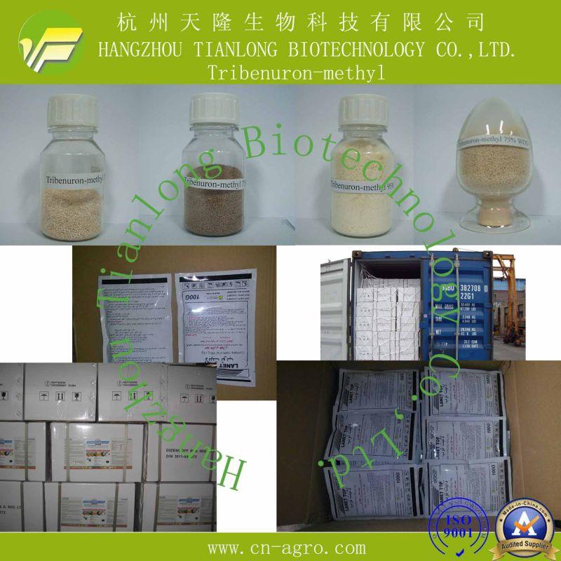 Tribenuron-Methyl (95%TC, 10%WP, 75%WP, 60%WG, 75%WG, 20%SP)