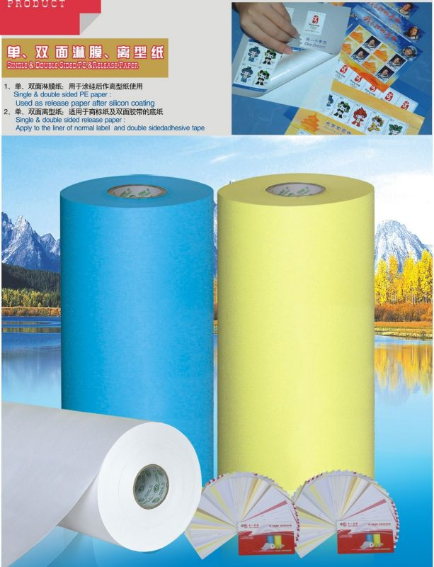 Silicone Coated Paper for Label Material