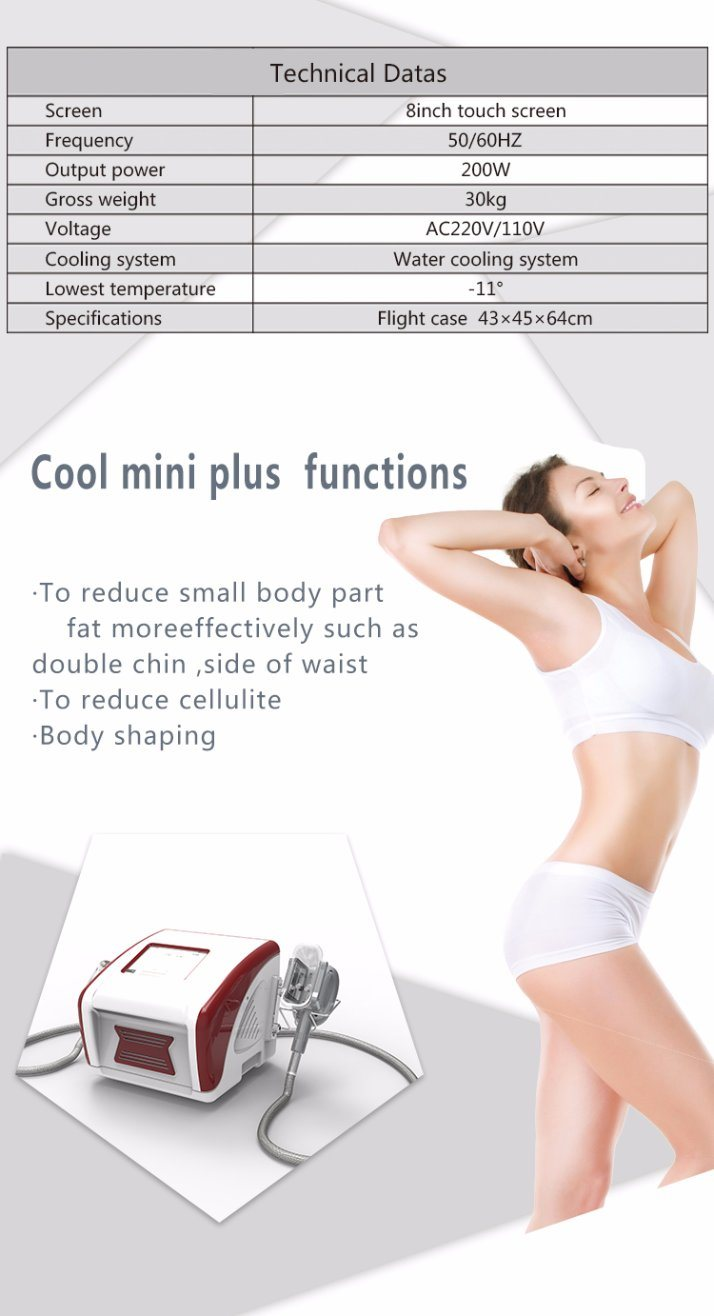 New Portable Slimming Weight Loss Zeltiq Slimming Machine Kryolipolyse Machine