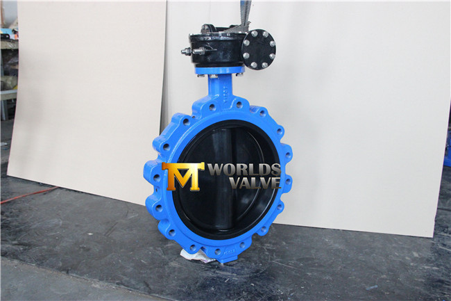 Rubber Coated Wafer Butterfly Valve