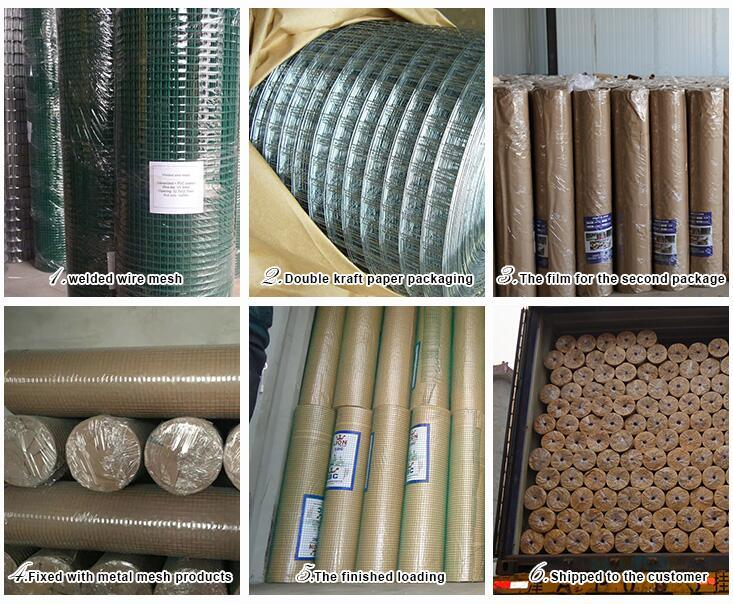 Low-Carbon Steel Square Hole Galvanized Welded Wire Mesh