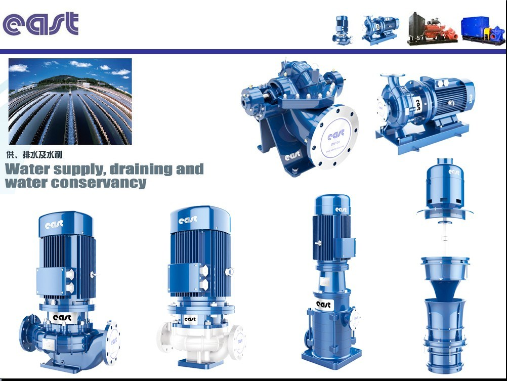 Vetical Wq Submersible Sewage Pump with Cable and Plug Use for Waste Water