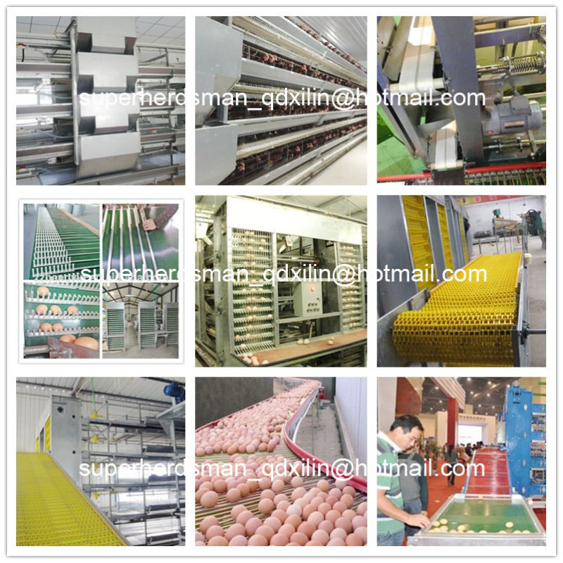 High Quality Chicken Cage Poultry Equipment for Broiler