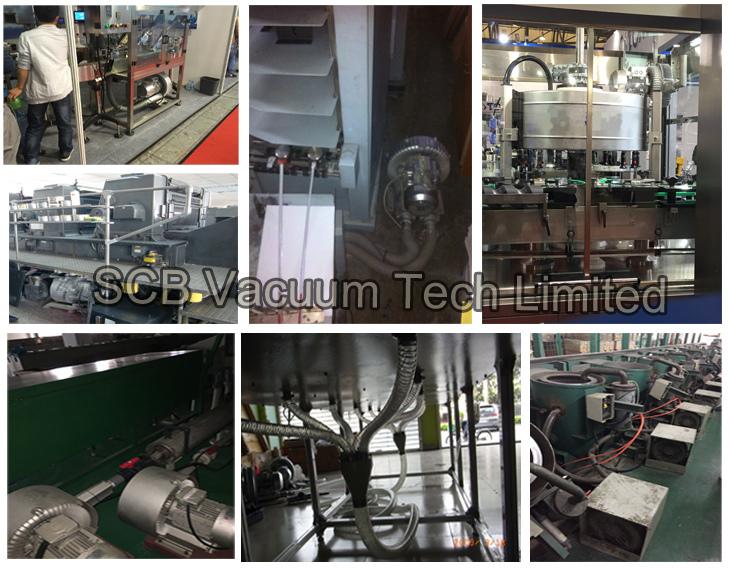 Oil Free Vacuum Air Pump for Sewage Treatment