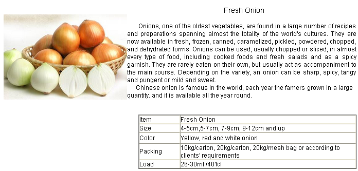 2016 Fresh Onion Exporter /Seller/Distributor From China