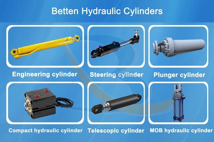 Hydraulic Boom Cylinder for Mobile Crane