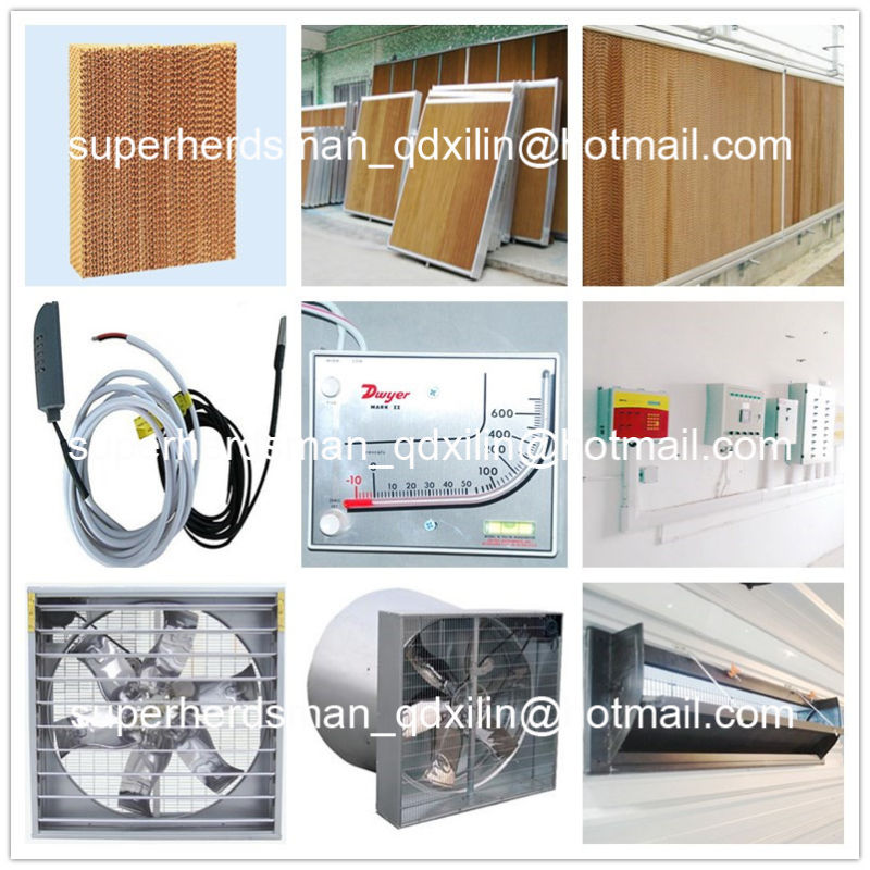 Full Set High Quality Automatic Poultry Equipment for Broiler