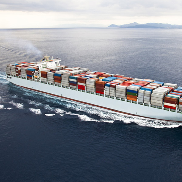Shipping by Sea Freight Rate Deliver Goods Fba From Shenzhen China to New Zealand Australia