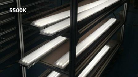 Vaportight LED From High Power Tri-Proof LED Light