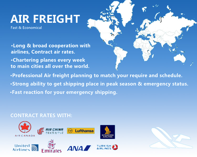 Porfessional Shipping Logistics Service From China to Worldwide