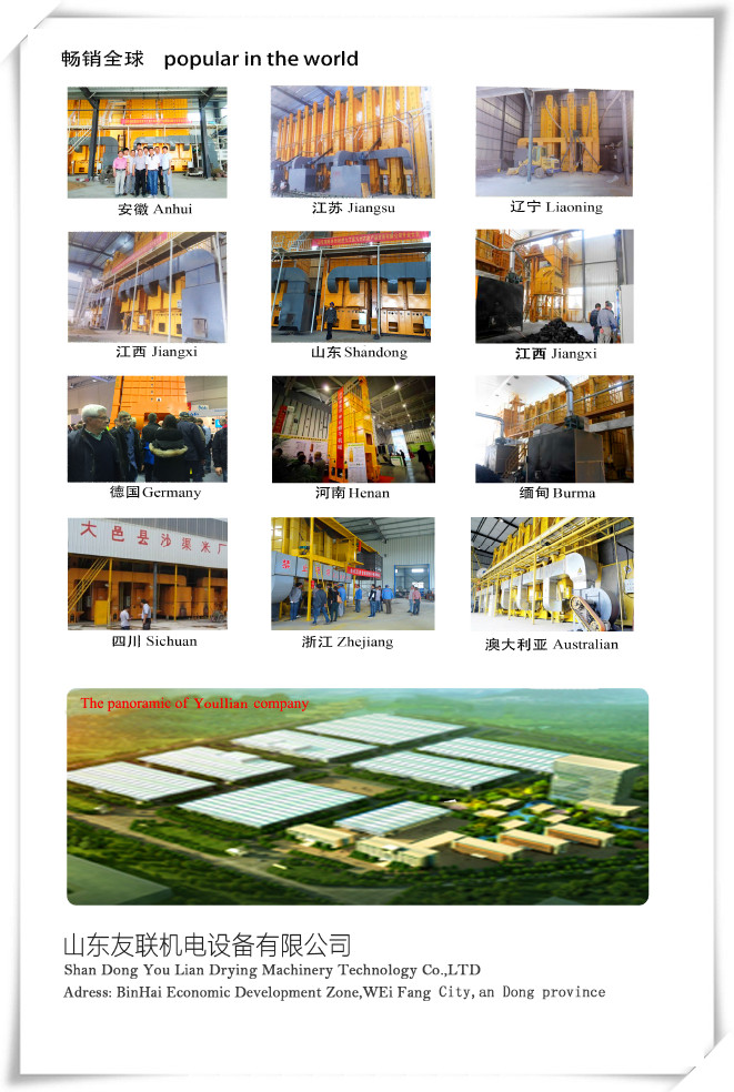 China Manufacture Pea Drying Machinery