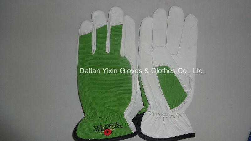 Sheep Leather Glove-Sheep Leather Glove-Working Glove-Safety Glove-Goatskin Glove