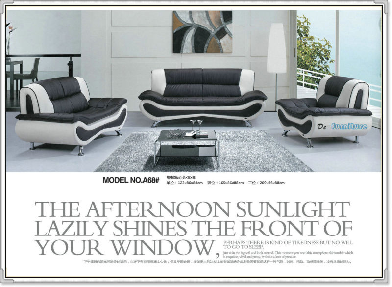 Pretty Living Room Genuine Leather Sofa Furniture (A68)