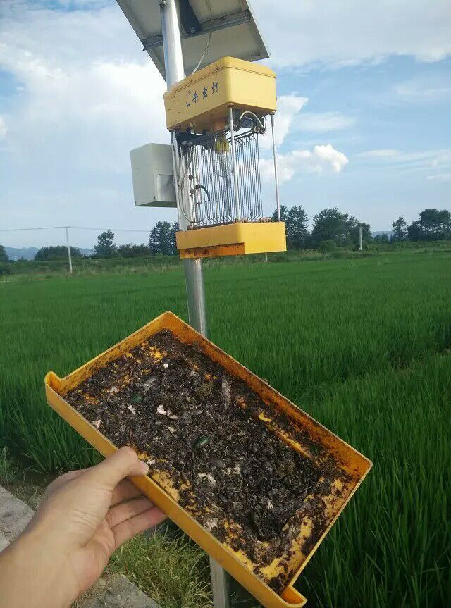 Eco-Friendly Solar Powered LED Solar Mosquito Killer/Insecticidal Fly Traps Lamp
