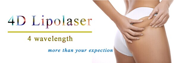 528 Diodes Lipolaser 940nm Laser for Clinic Device