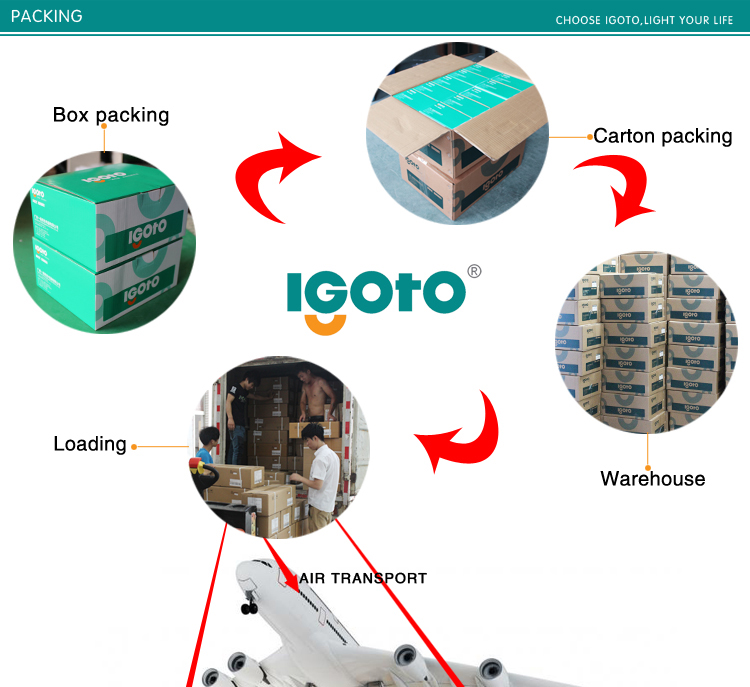 Igoto A1021 Factory Produced American Standard 118*75mm 2 Gang 1 Way Switch 2 Gang 2 Way Switch