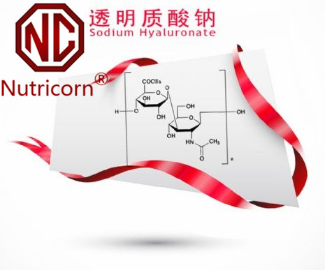 Sodium Hyaluronate/Ha Food/Cosmetic Grade