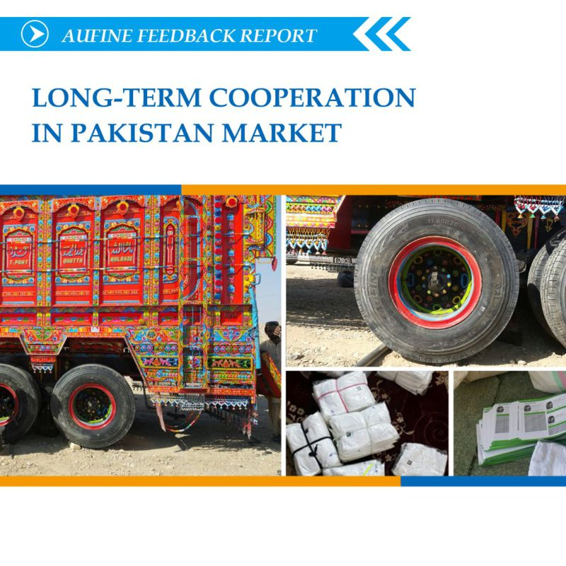 Heavy Duty Radial Truck Tyre for Truck with Smark