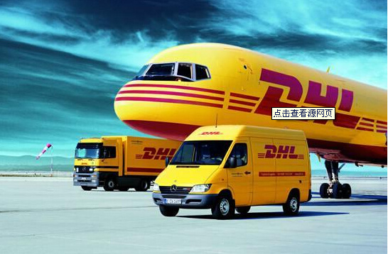 China Freight Forwarder Container Sea Freight From China to New Zealand