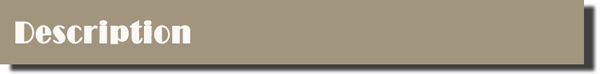 (SHSY-019) Plain Wooden Handle Paint Brush