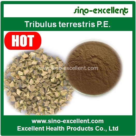 Tribulus Terrestris Saponins Standardized Extract