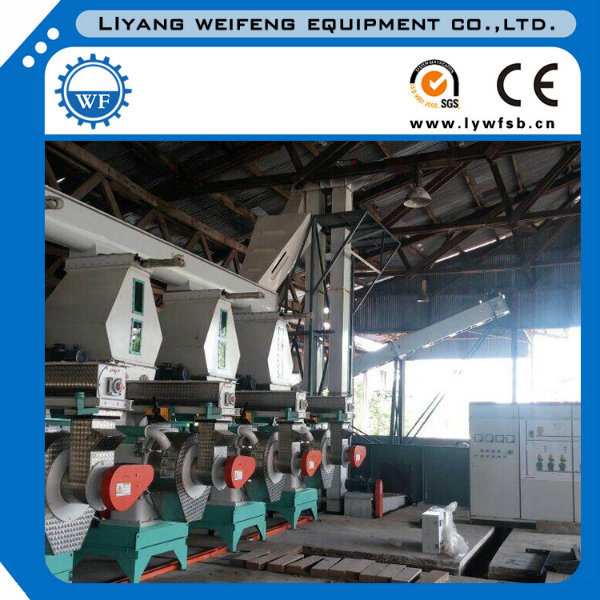 Ce Certified Wood Pellet Mill with 1-15t/H Capacity