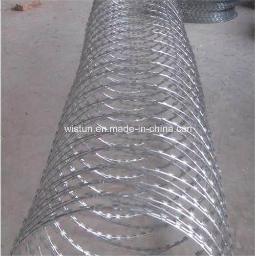 Coil Razor Wire /Razor Wire Price