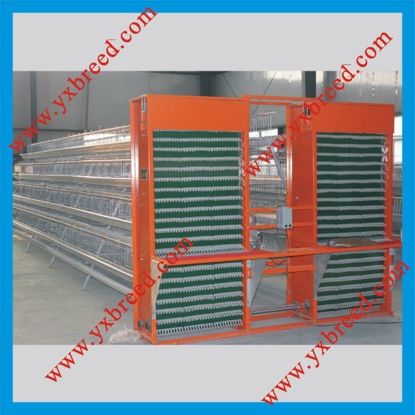 Battery Chicken Cage Poultry Equipment